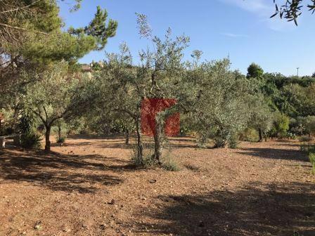 Fabbricato rurale con terreno a Chiaramonte